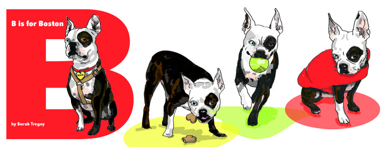 B is for Boston Terrier, a book for babies and toddlers written and illustrated by Sarah Tregay
