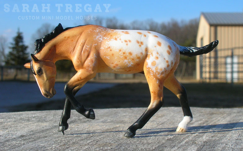Appaloosa stallion custom mini model horse by Sarah Tregay (Breyer Stablemates)