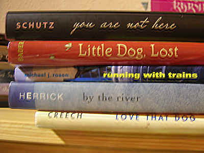 Spine Poem of Novels in Verse: You are not here/ little dog, lost/ running with trains/ by the river./ Love that dog.(by Sarah Tregay)